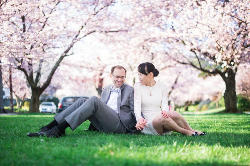 樱花节的订婚