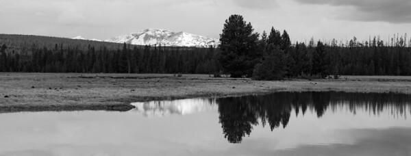 Snowy Reflection