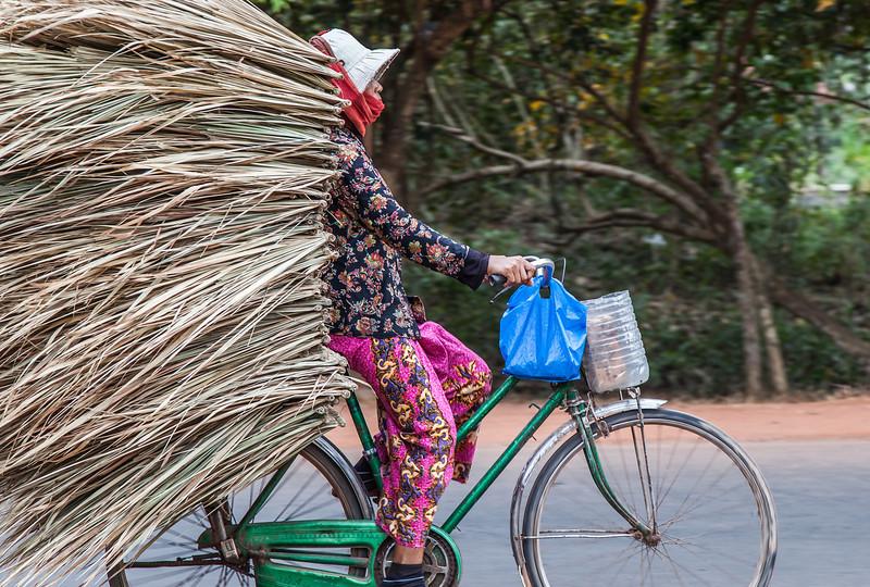 Llevo Carga<br /> <br /> Angkor, Cambodia