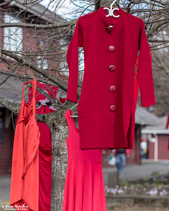 Red Dress Project on display at International Women's Day