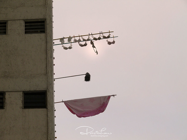 Bras - One of those rare provocative picture served as candid without human element