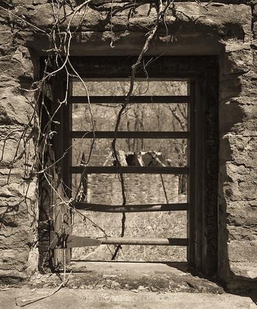 Watson Cabin Ruins