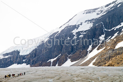 Glacier hikers, Icefields Parkway, Jasper Nat'l Park in Canadian Rockies - D5-C3 -0156 - 72 ppi