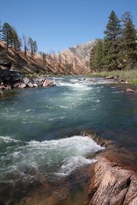 Pine Flat rapid.