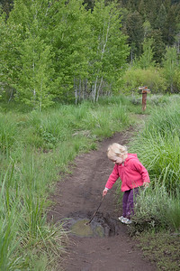 The lower loops connecting Cow Creek to Greenhorn Gulch are the perfect distance for younger hikers.