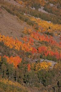 Hyndman Basin in mid September.