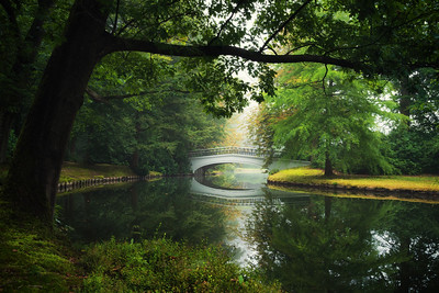 Bridge to autumn II