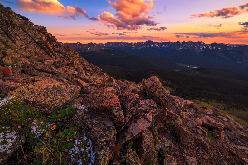 Sunset and Wildflowers on Breckenridge and the Ten Mile Range