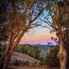 Fairmont Ridge
