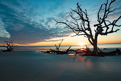 Driftwood Beach Sunrise # 6