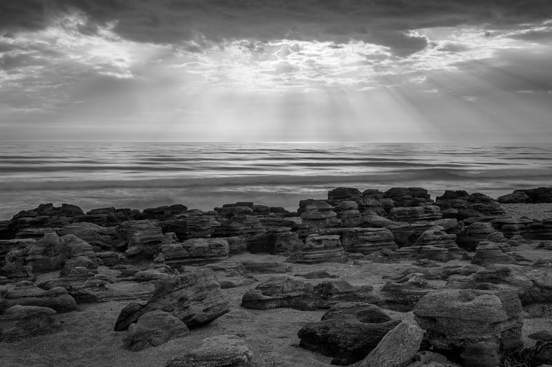 Light on a Coquina Beach