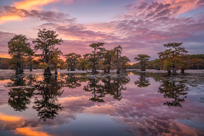 Magnificent sunset in the swamps