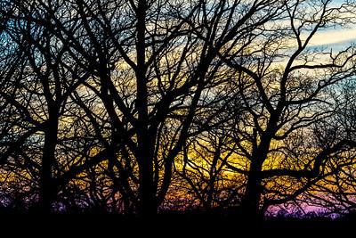 Sunset, Dellwood Park, Lockport, Illinois, March 16, 2015