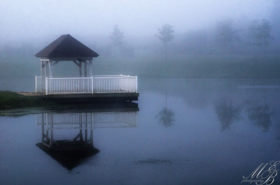 Foggy morning lake