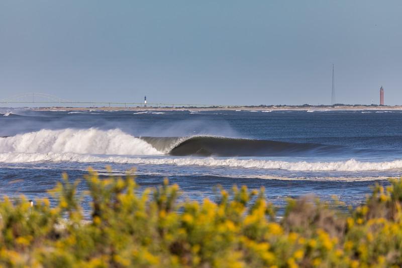 Lighthouse Surf