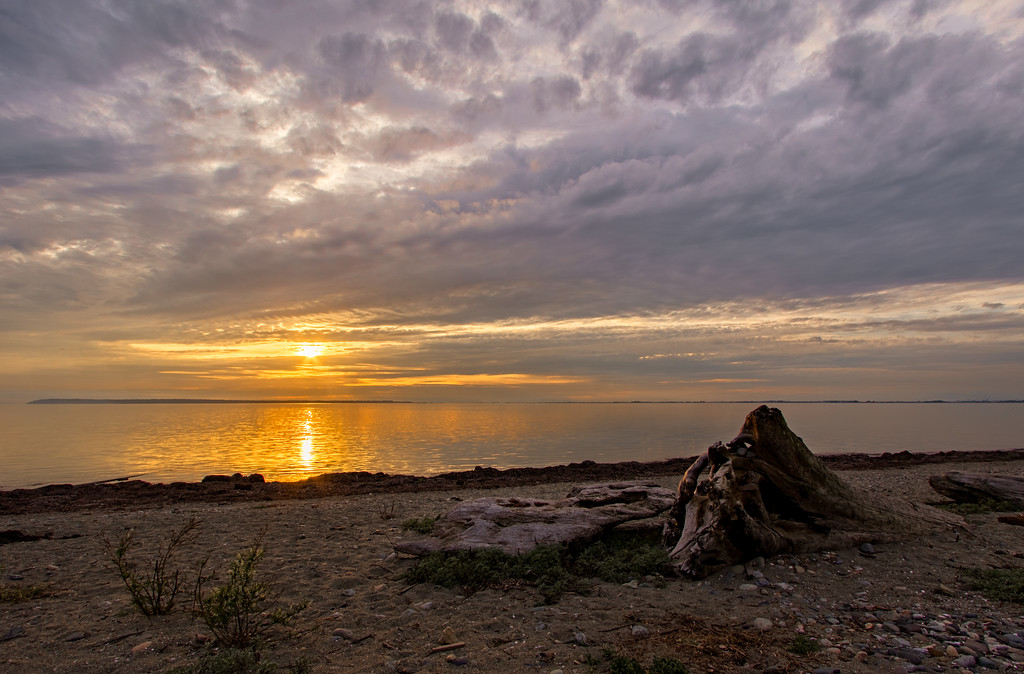 Sunset at Crescent Beach, BC.   Merged 3 brackets and decided to add a cool tone.  I added more purple and red in the sky.