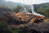 Lumber Mill - in the Makhonjwa Mountains - just east of Bulembu, Swaziland.