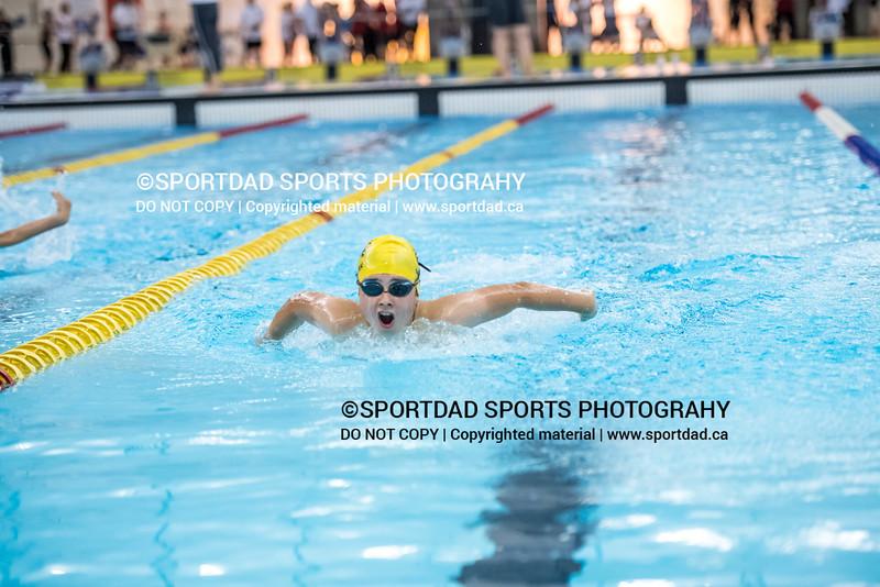 SPORTDAD_swimming_47143