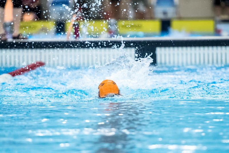 SPORTDAD_swimming_47304