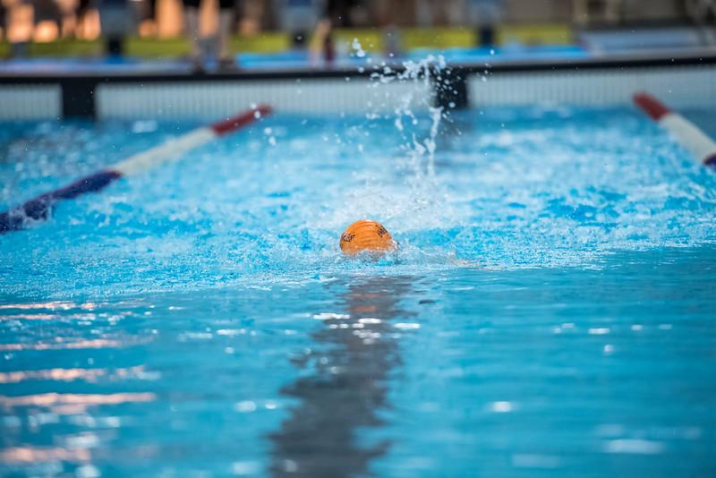 SPORTDAD_swimming_47323