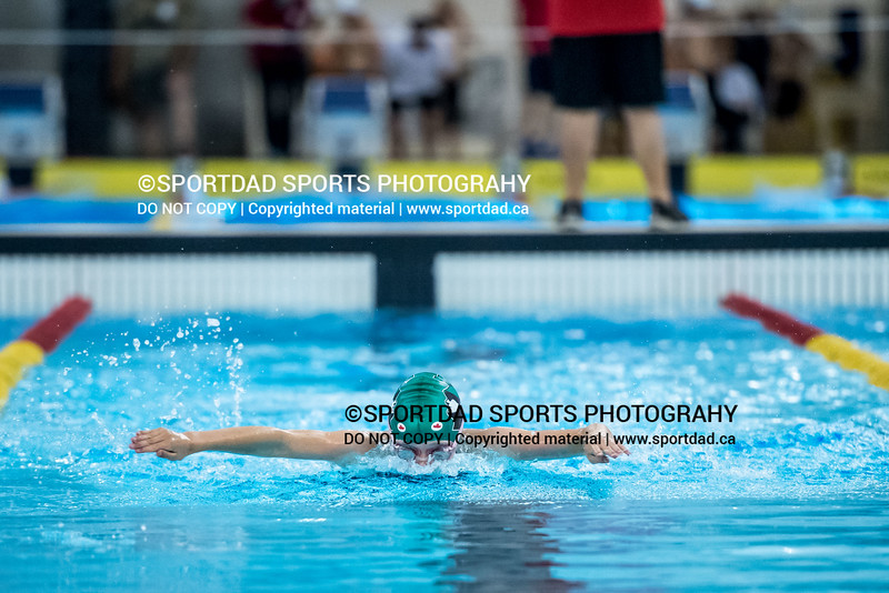 SPORTDAD_swimming_7745