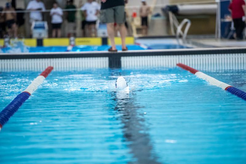 SPORTDAD_swimming_7359