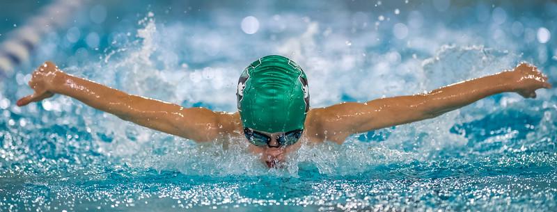 SPORTDAD_Aquafest_swimming_5348
