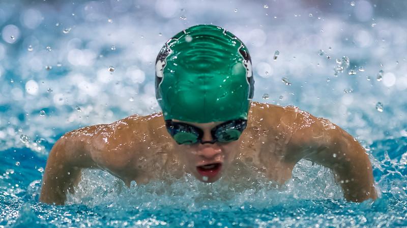 SPORTDAD_Aquafest_swimming_5346
