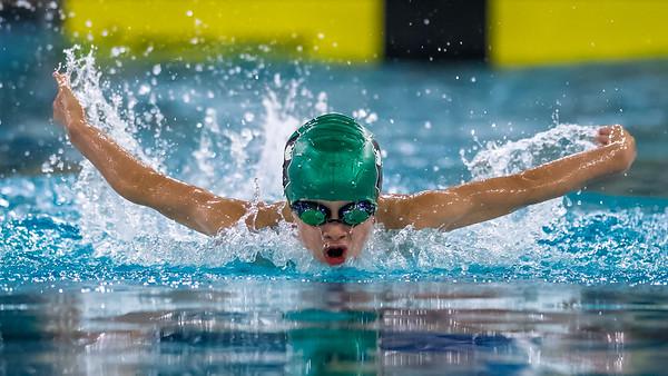SPORTDAD_Aquafest_swimming_5328