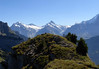 From atop the Oberberghorn - beyond the Indri Sagissa and Winteregg (L) - to the distal snow-capped peaks of the Wetterhorn and Barglistock (L), Schreckhorn and Lauteraahorn (C), and the upper peak of the Finsteraahorn rising above the lower slope of the Eiger (R) - canton of Bern