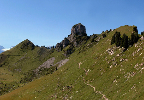 The sedimentary limestone outcrop of the Gumihorn - at the Schynige Platte - canton of Bern
