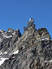 Alpine Chough - soaring above the Sphinx Observatory - Jungfraujoch - canton of Valais