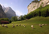 Southern view down the fertile Lauterbrunnen Valley - canton of Bern