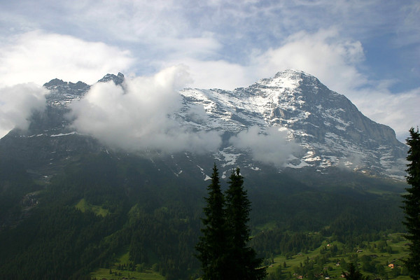 Beyond the conifers to the Ostegg betwen the clouds - and the adjacent northwest face of the Eiger - canton of Bern
