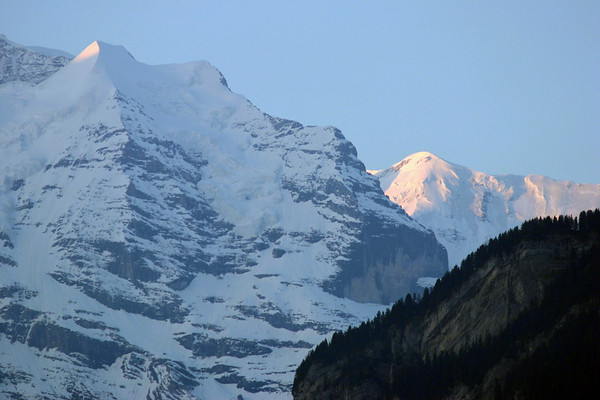 From the shaded limestone and coniferous tree-lined ridge of the Lauterbrunnen Wall in the foreground - to the day's first sunlight upon the peak of the Silberhorn (L) - and the distal Ebnefluh (R), which forms the canton boundaries between here in Bern, and Valais on the southern side