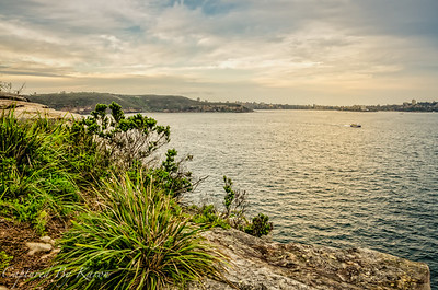 Views from Middle Head, Sydney