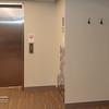 Coat Hooks outside elevator: Lower Level