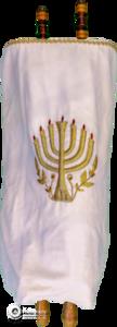 TBS Torah-05-White-TorahGreenScreen-216241-Edit copy