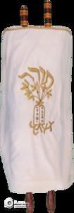 TBS Torah-01-White-TorahGreenScreen-216211-Edit copy