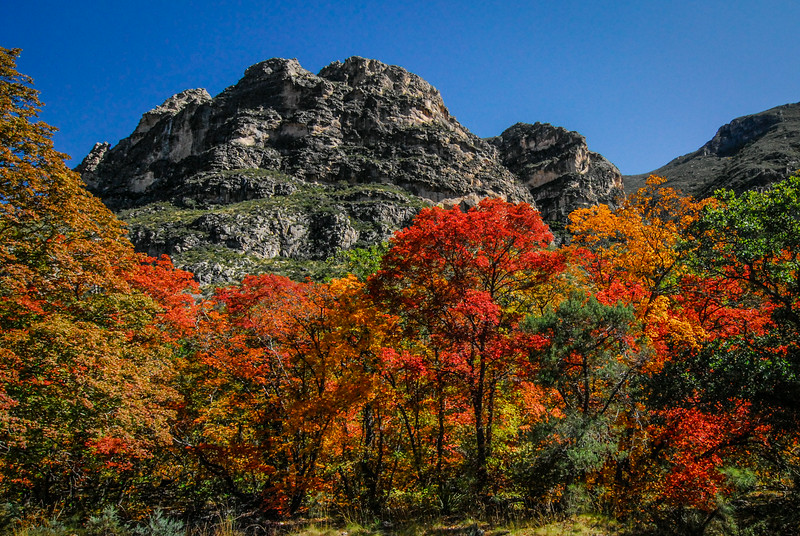 McKittrick Canyon Color