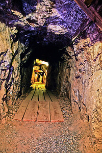 The Mine Shaft