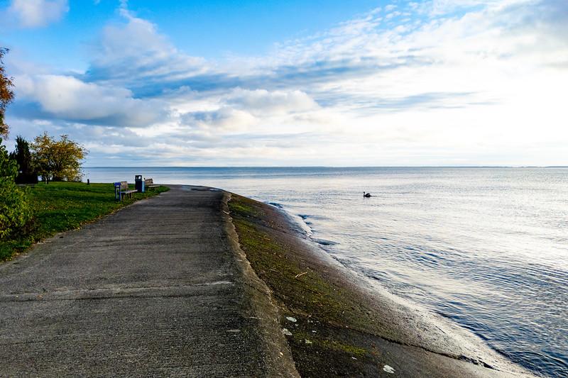 Running along the Preilos Bay