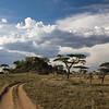 Kopje - Serengeti, Tanzania