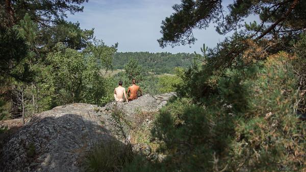 à la forêt de Fontainebleau - 28 août 2017