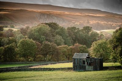 Upper Teesdale Pasture II