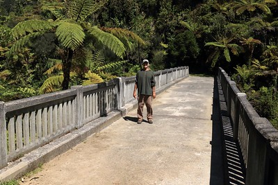 Bridge to Knowwhere - along the western slope of Mt. Whirinaki, above the Mangapurua Stream, along a side trail during a the 3 day canoe experience down the sacred Whanganui River in the National Park - Manawatu/Wanganui region - North Island - New Zealand.