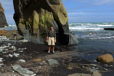 "Among the ""3 Sisters"" with the hind-legs of ""The Elephant"" distal - near low tide, revealing the halophytic vegetation upon the base of the seastack - Taranaki region - North Island - New Zealand."