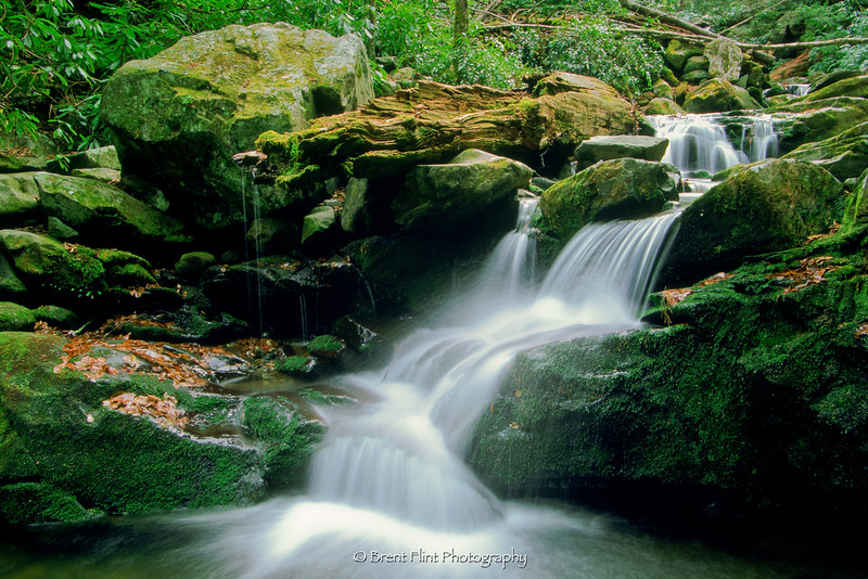 S.2647 - Roaring Fork River, Great Smoky Mountains National Park, TN.
