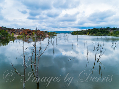 Cove on Inks Lake