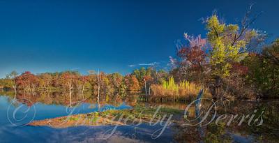 Fall on Inks Lake Cove